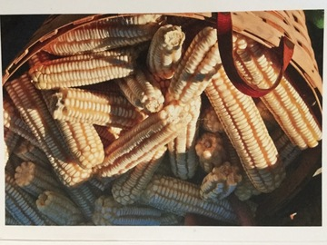 pay online or by mail: Hickory King white corn