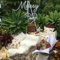 Hire: 'Marry Me' Neon Sign - Large