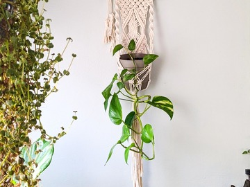 Selling: Macrame Plant Hanger for Wall