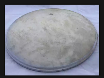 """Selling with online payment: Slingerland 26"""" Radio King Calf Skin Bass Drum Head"""