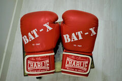 Alquilar: Guantes Boxeo Charlie