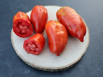 pay online only: West Virginia Pepper Tomato