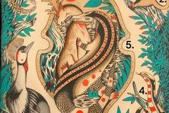 Tattoo design: 4 - Coiled Snake