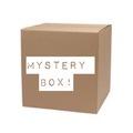 Liquidation/Wholesale Lot: WOMEN'S NORDSTROM BRAND BP & TOPSHOP BASICS MYSTERY BOX