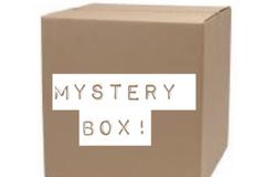 Liquidation/Wholesale Lot: WOMEN'S NORDSTROM & NORDSTROM RACK PLUS SIZE MYSTERY BOX - 30