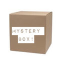 Liquidation/Wholesale Lot: WOMEN'S NORDSTROM & NORDSTROM RACK PLUS SIZE MYSTERY BOX