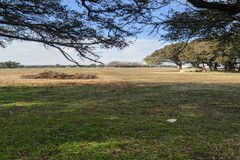 Land Available for Lease: Space for bees on 12ac. property in Hood County, TX