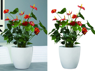 Offering with online payment: Photoshop Clipping Path Services Provider