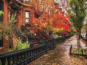 Monthly Rentals (Owner approval required): Brooklyn NY, Driveway With Security Camera Near Airport.