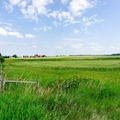 Land Available for Lease: 8 Acres Available for Beekeeping in Lake County, IL