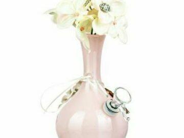 """Post Now: My Bud Vase """"Rachel"""" Water Pipe"""