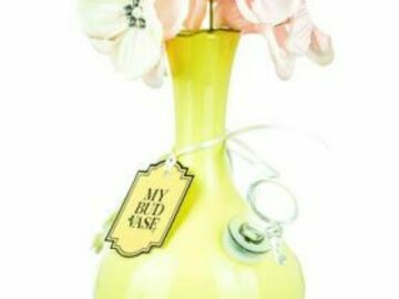 """Post Now: My Bud Vase – """"Phoebe"""" Water Pipe"""