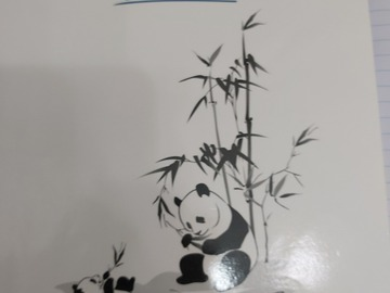 Selling with online payment: The College Panda SAT Essay