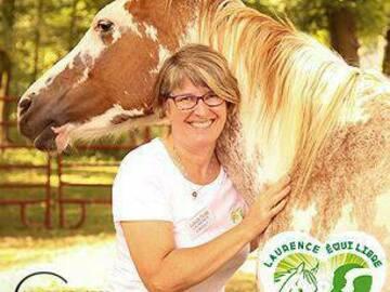 Offre: LAURENCE EQUI LIBRE développement personnel guidé par les chevaux