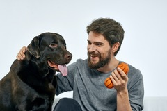 Employee Engagement & Team Building: Brain Games with Your Dog While WFH (<20 Attendees)