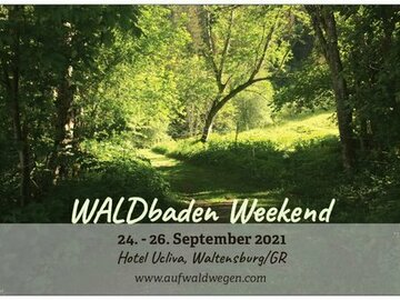 Workshop Angebot (Termine): Waldbaden weekend