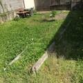 NOS JARDINS A PARTAGER: Jardin potager à Saint-Martin-d'Hères