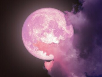 Selling: Full Moon SPELL & READING COMBINATION. Pink Moon. Super Moon!