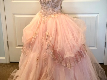 Daily Rental: Tulle Ballgown in Blush