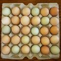 Selling Without Online Payment: brown farm fresh eggs!