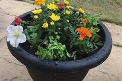 For Sale: Flower planters
