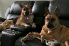 : Maggie & Ace