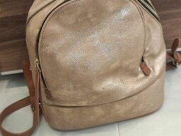Selling without online payment: Rose Gold Backpack
