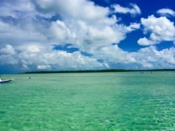 Offering: Key west guide