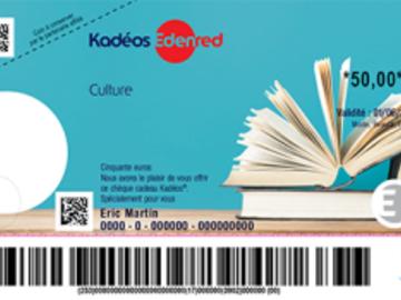 Vente: Chèques Culture (240€)