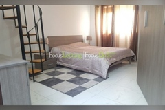 Rooms for rent: Spacious Room for Rent