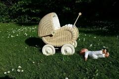 VeeBee Virtual Babysitter: Virtual Baby Sitter and Tutor