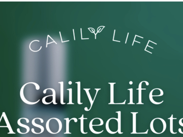 Liquidation/Wholesale Lot: Calily Life Assorted Lot