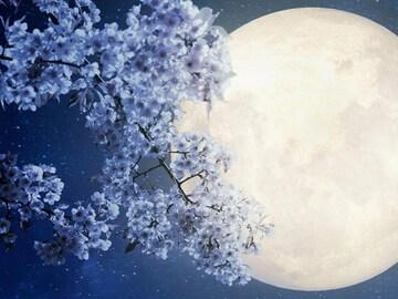 Selling: Full Moon SPELL & READING COMBINATION. Flower Moon. Super Moon!