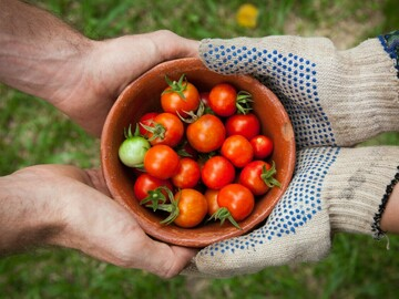 NOS JARDINS A PARTAGER: Prête grand jardin avec espace potager et verger