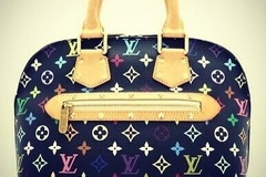 For Rent: Louis Vuitton handbag for rent $80 per day