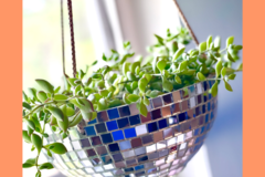 """Selling with online payment: 8"""" Disco Ball Hanging Planter with drainage"""