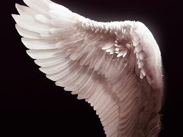 Selling: Angel Guidance