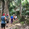 Excursion or Lesson: Hike the mountains above Sayulita