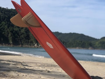 Daily Rate: Awesome Fish Surfboards available Gold Coast