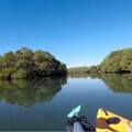 Daily Rate: Double Kayak - Paddle with a mate