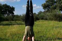 Private Session Offering: Tailormade Interactive 1-on-1 Yoga