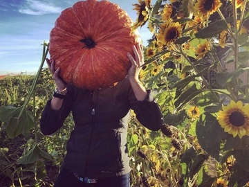 Book Your Stay: Hidden Acres Orchards