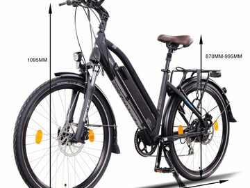 Daily Rate: Day in Brissy - ride in Style & Comfort - E-Bike