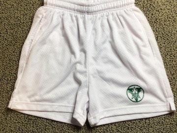 Selling A Singular Item: Camp Vega Mesh shorts (not shiny)