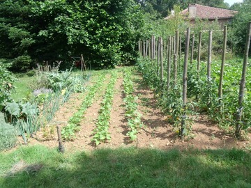 NOS JARDINS A PARTAGER: Parcelle pour jardiner