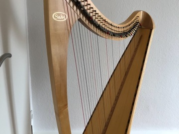 Renting out with online payment: Celtic Harp Salvi Livia