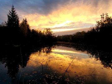 NOS JARDINS A LOUER: Parc de 20 hectares avec étang à 1h de Paris