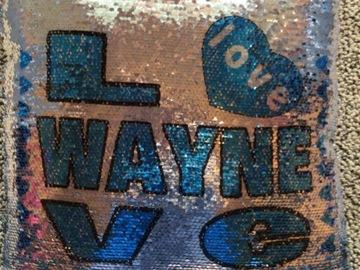 Selling A Singular Item: Camp Wayne for Girls Sequin pillow