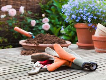 PETITES ANNONCES: cherche jardin pour jardinage