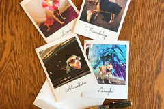 Selling: Use Your Dog Words Set of Four Note Cards